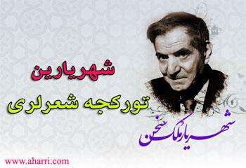 شهریار در کنار رزمندگان ایستاد و انقلاب اسلامی را درک کرد