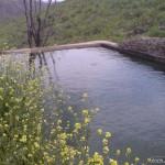 استخر کریم آباد